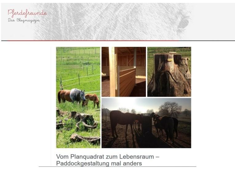 pferdefreunde-72016-s-1