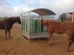 Patura Raufe mit Pferde-Sicherheitsfressgittern (Birkenhof Wölling)